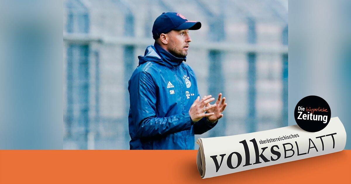 Hoffenheim Neuer Trainer