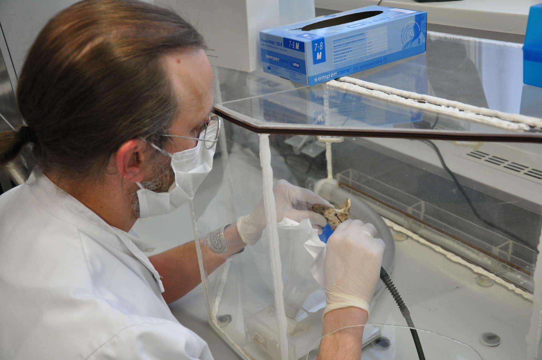 Molekularbiologe Jan Cemper-Kiesslich von der Gerichtsmedizin Salzburg bei der Arbeit im Labor.