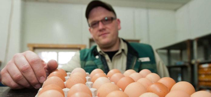 Einmal für die Bio-Bewirtschaftung entschieden ist der Großteil der Bauern auch Jahre danach noch damit zufrieden.