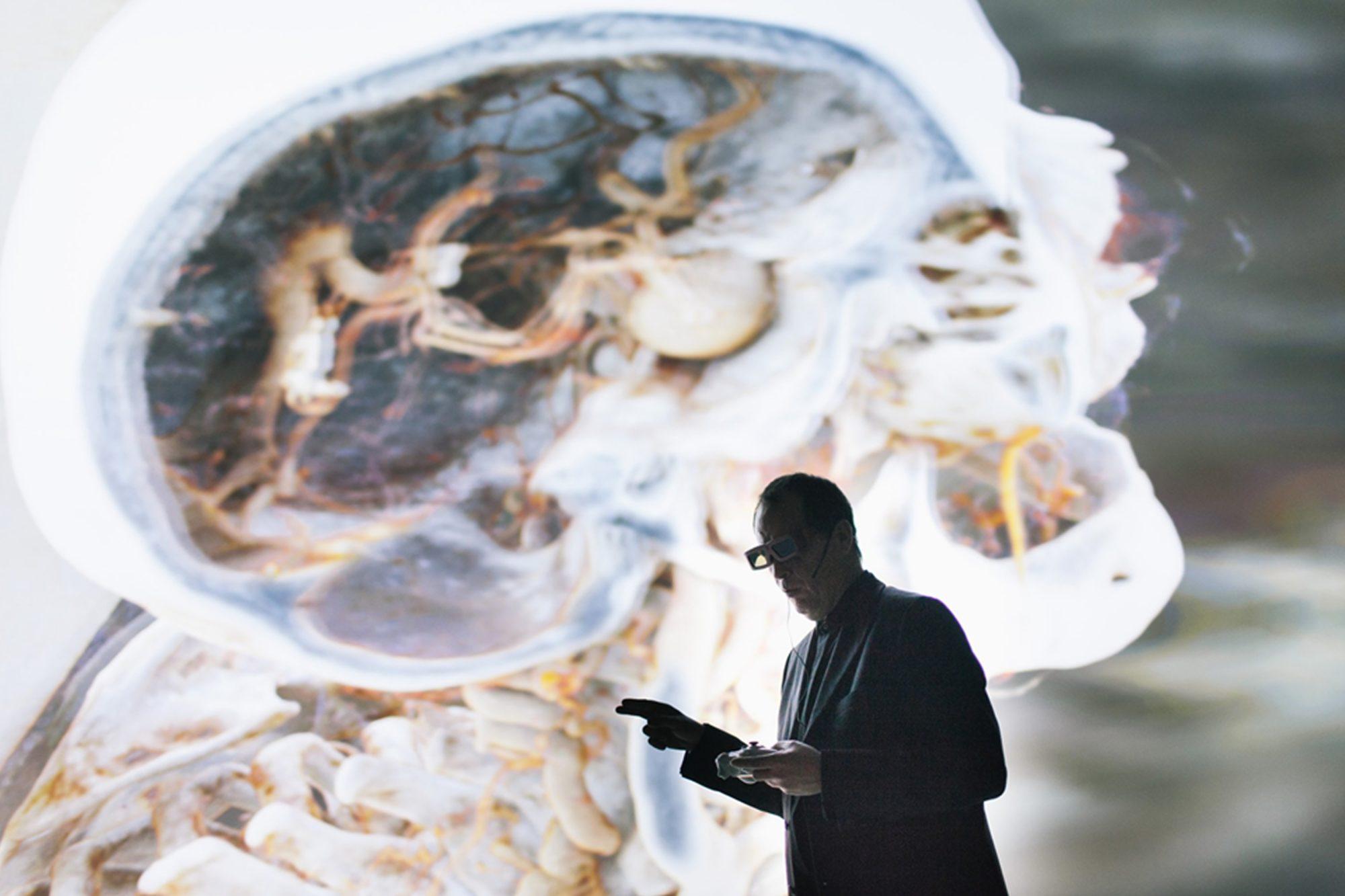 Beeindruckende Anatomie in 3-D