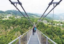In schwindelerregender Höhe über die Donau wandern: Die weltweit längste Hängebrücke für Fußgänger würde dies in Linz möglich machen.