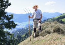 Vor allem Bergbauern würden unter der im gemeinsamen Agrarprogramm der Europäischen Union vorgesehenen Kürzung der zweiten Säule leiden. Oberösterreichische Bauernvertreter machten deshalb ihre Position klar.