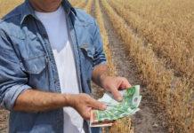 Details aus dem Agrarbudget 2019: Zwei Millionen Euro sind für agrarische Forschungsprojekte reserviert, 765.000 Euro für das Genussland Oberösterreich, die Agrarinvestitionskredite sind mit 1,3 Millionen Euro veranschlagt.