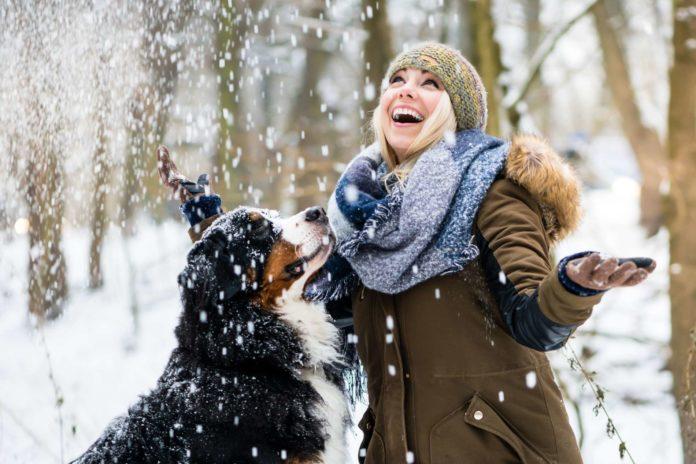 Vor allem auf die richtige Pfotenpflege sollten Hundehalter Wert legen
