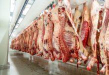43.895 Kühe wurden laut AMA in OÖ von Jänner bis Ende September 2018 geschlachtet — 7 Prozent mehr als im Vorjahr.