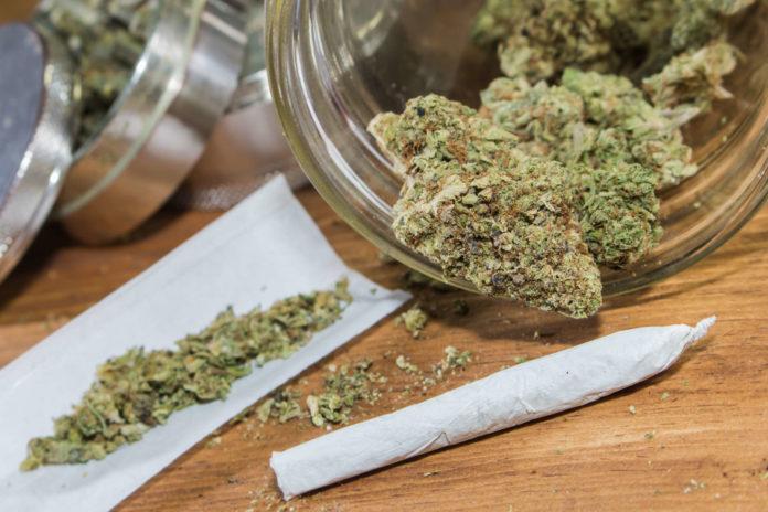 """CBD ist """"in"""": Diese Cannabis-Blüten wirken nicht berauschend und werden seit Oktober im Smaragd-Café Linz vertrieben. Sie werden dort jedoch nicht als Rauchwaren geführt, sondern als """"Aromaprodukte""""."""