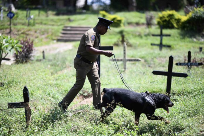 Weil weitere Anschläge befürchtet werden, durchsuchen Polizisten mit Sprengstoffspürhunden die Friedhöfe von Colombo, ehe die Opfer des Osterterrors begraben werden können.