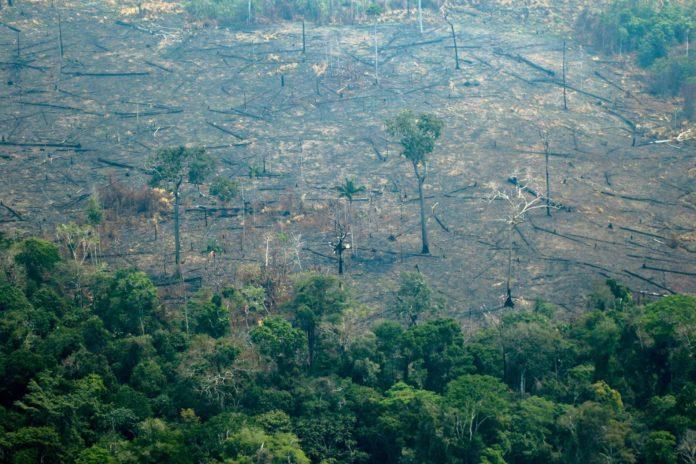 Die Brandschäden im Amazonas-Urwald lassen die G-7 nicht kalt.