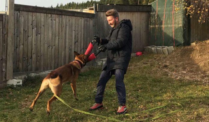 Gerald Koller beim Training mit einem ehemaligen Problemhund.