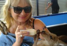 Britta Kuttner mit einem Babykänguru.
