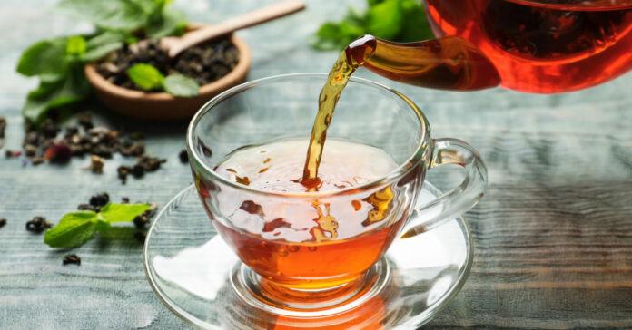 """""""Echter"""" Tee fördert die Bakterien im Darm und wirkt sich so positiv auf die Darmgesundheit aus. Deshalb sollte das Heißgetränk täglich – nicht nur im Winter – konsumiert werden."""