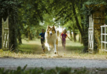 Die deutsche Lassie in Aktion ...