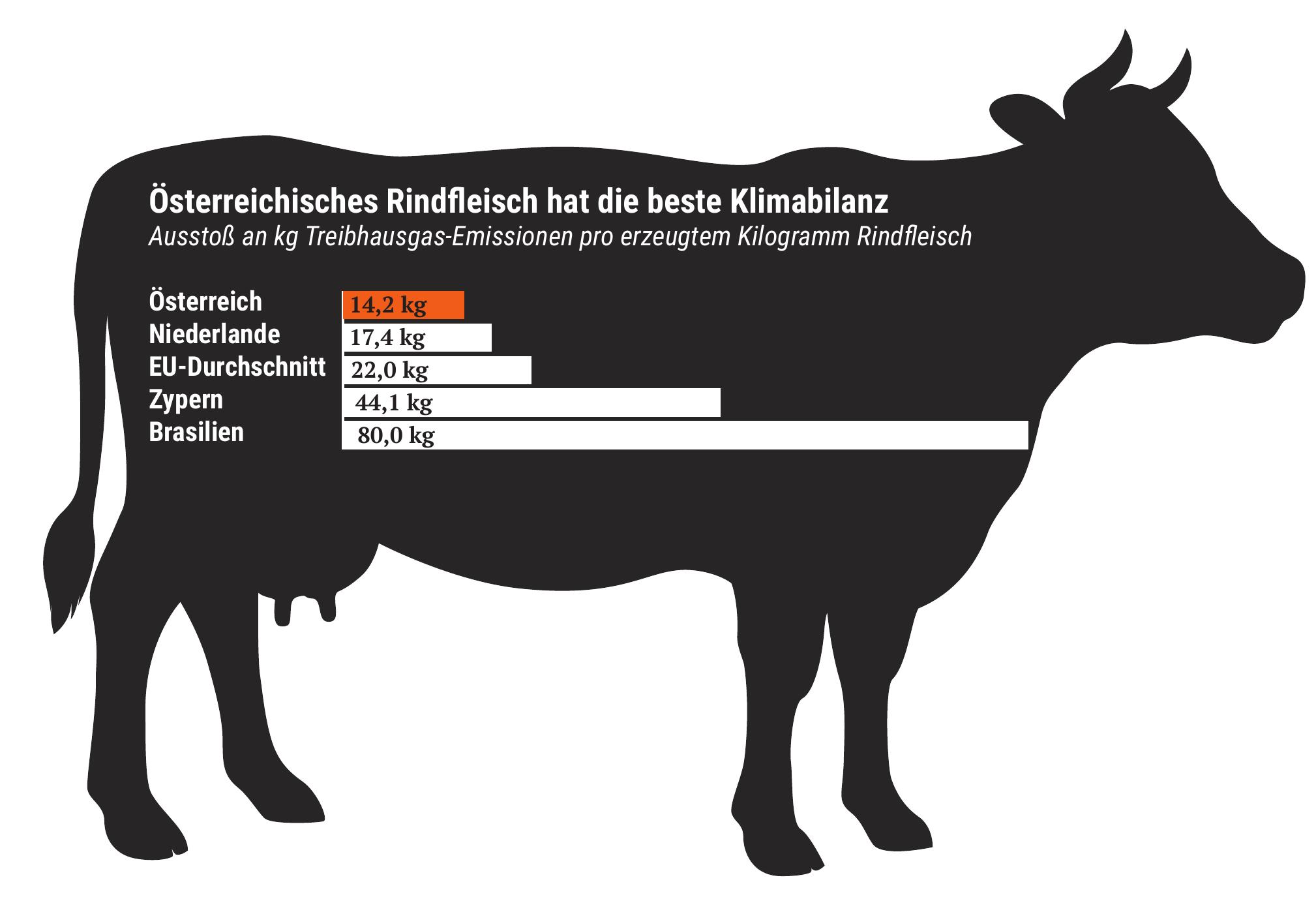 Oberösterreichs Rinder sind Garanten für Klimaschutz und regionale Wertschöpfung.