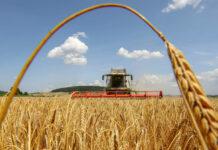 Österreichs Politik will die heimische Landwirtschaft stärken.