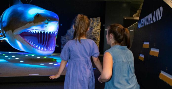 Reise ans Meer: Die Welt unter Wasser kann man auch im Linzer Schloss erkunden.