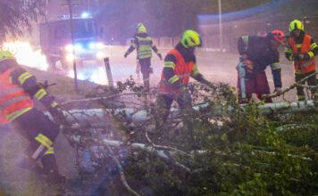 Umgestürzte Bäume richteten großen Schaden an und mussten von den Feuerwehren noch während des Unwetters von Straßen entfernt werden.