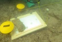 Taucher entdecken am Seegrund wahre Schätze für die Pfahlbauforschung.