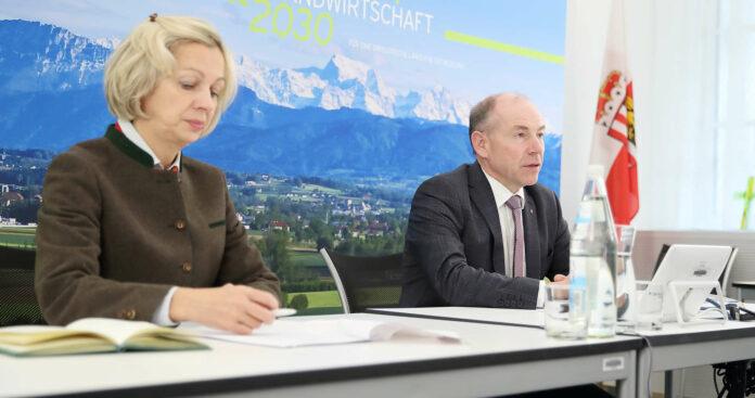 Landesforstdirektorin Moser und LR Hiegelsberger freuen sich über 15 Millionen gesetzte Bäume in fünf Jahren.
