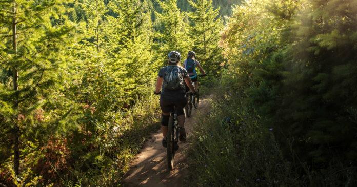 Seit dem Beginn der Pandemie ist das Aufkommen von Mountainbikern in den Wäldern stark angestiegen.