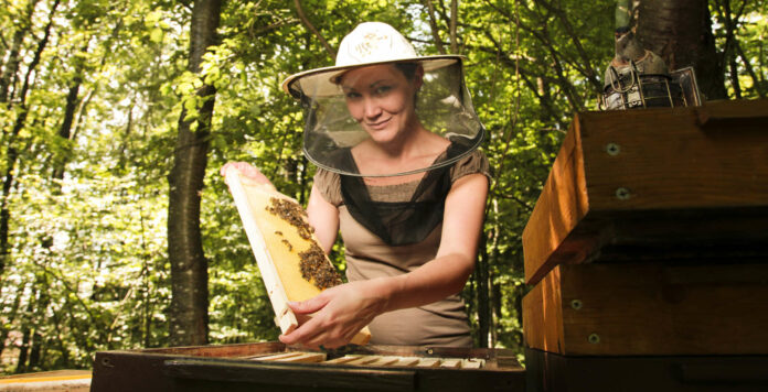 Die Bienenzucht ist keine Männerdomäne mehr, immer mehr Frauen begeistern sich für dieses Hobby.