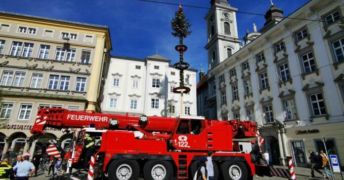 Nur wenige Stunden lang zierte der Maibaum aus Neumarkt im Mühlkreis den Linzer Hauptplatz.